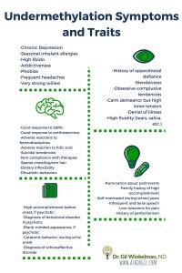 Undermethylation Symptoms and Traits